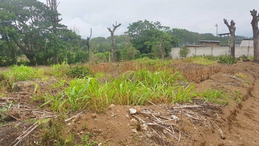 Land for Sale Outside of Antigua