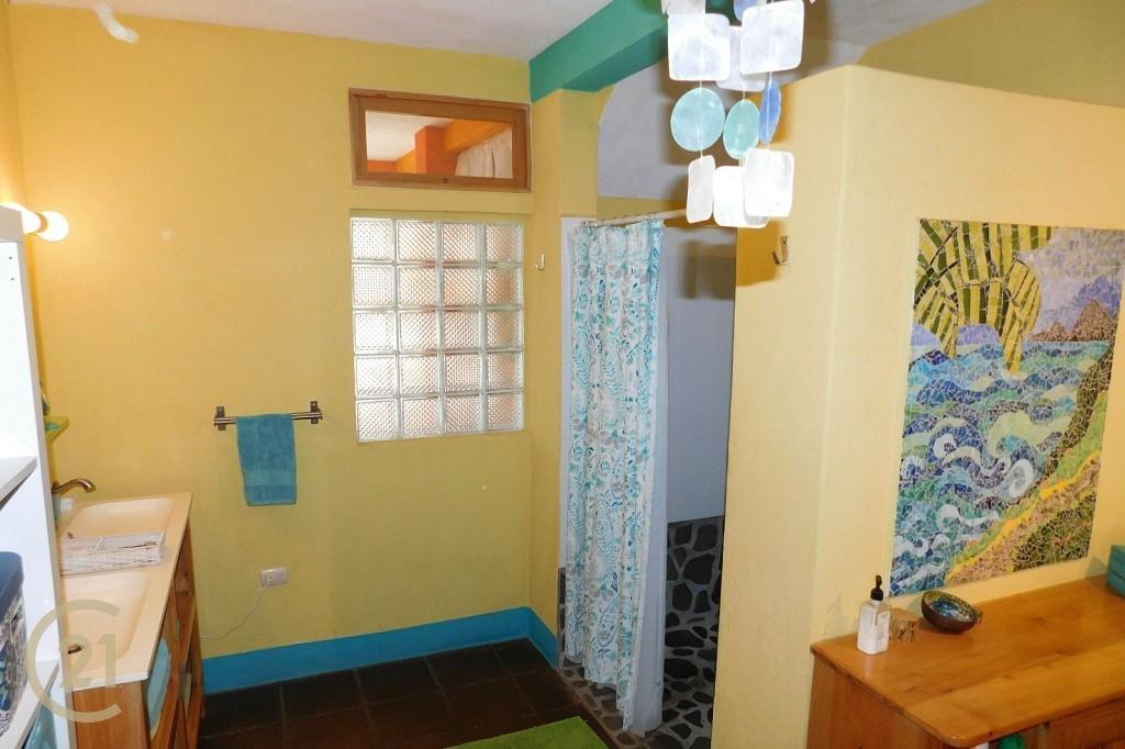 SJ Downstairs Bathroom 1-1