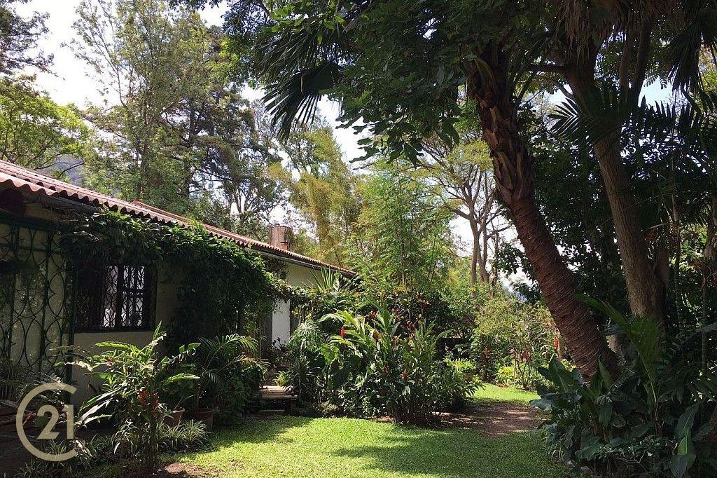 DP-Exterior-of-house-and-garden-1-1 (1)
