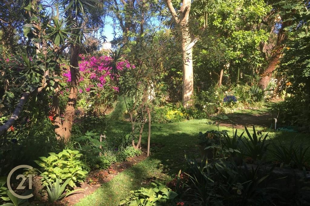 DPB Gardens 1-2