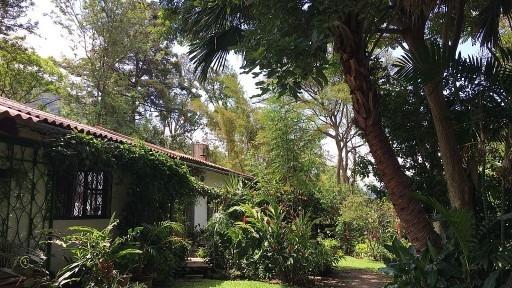 DP-Exterior-of-house-and-garden-1-1
