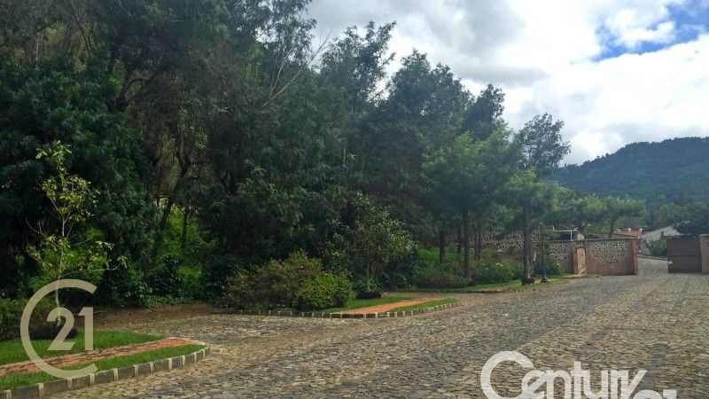Large  Lot for Sale - San Agustin Finca Filadelfia