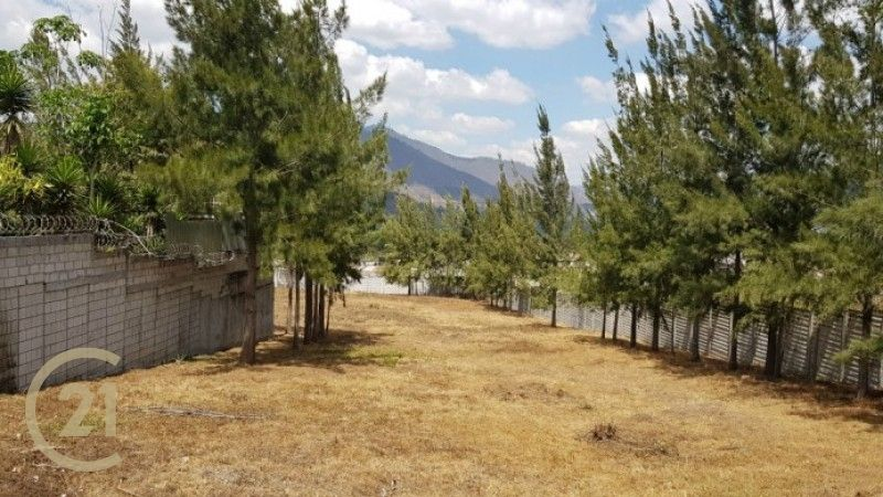 Land For Sale - Large Lot - 4,554 Meters or 6,515 Varas
