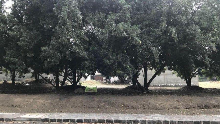 Lot for Sale In Hacienda del Comendador